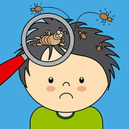 10 myths about head lice