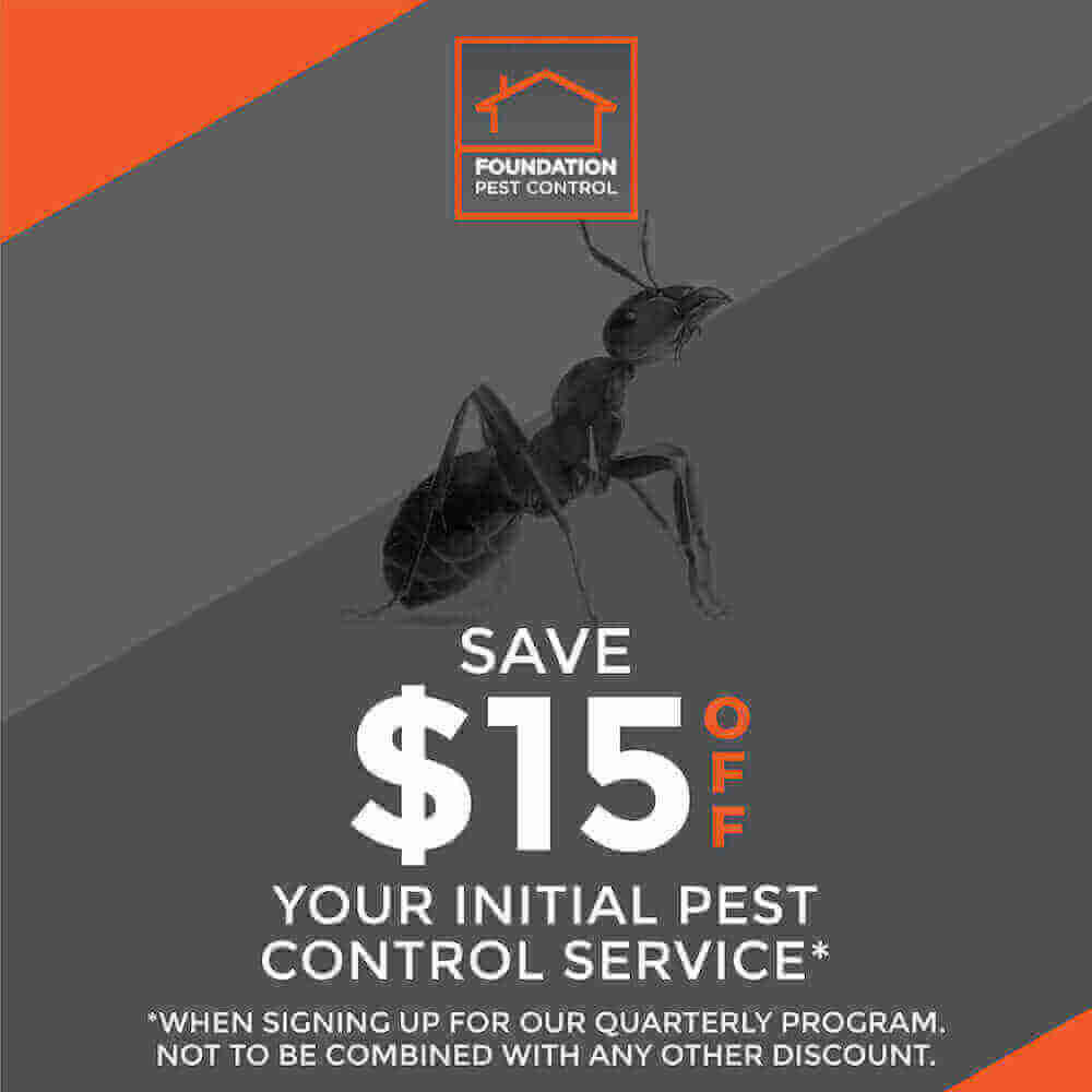 Pest Control Service Coupon