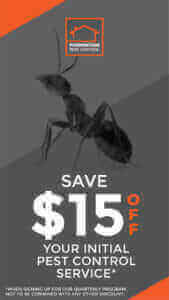 Pest Control Special Offer Foundation Pest Control