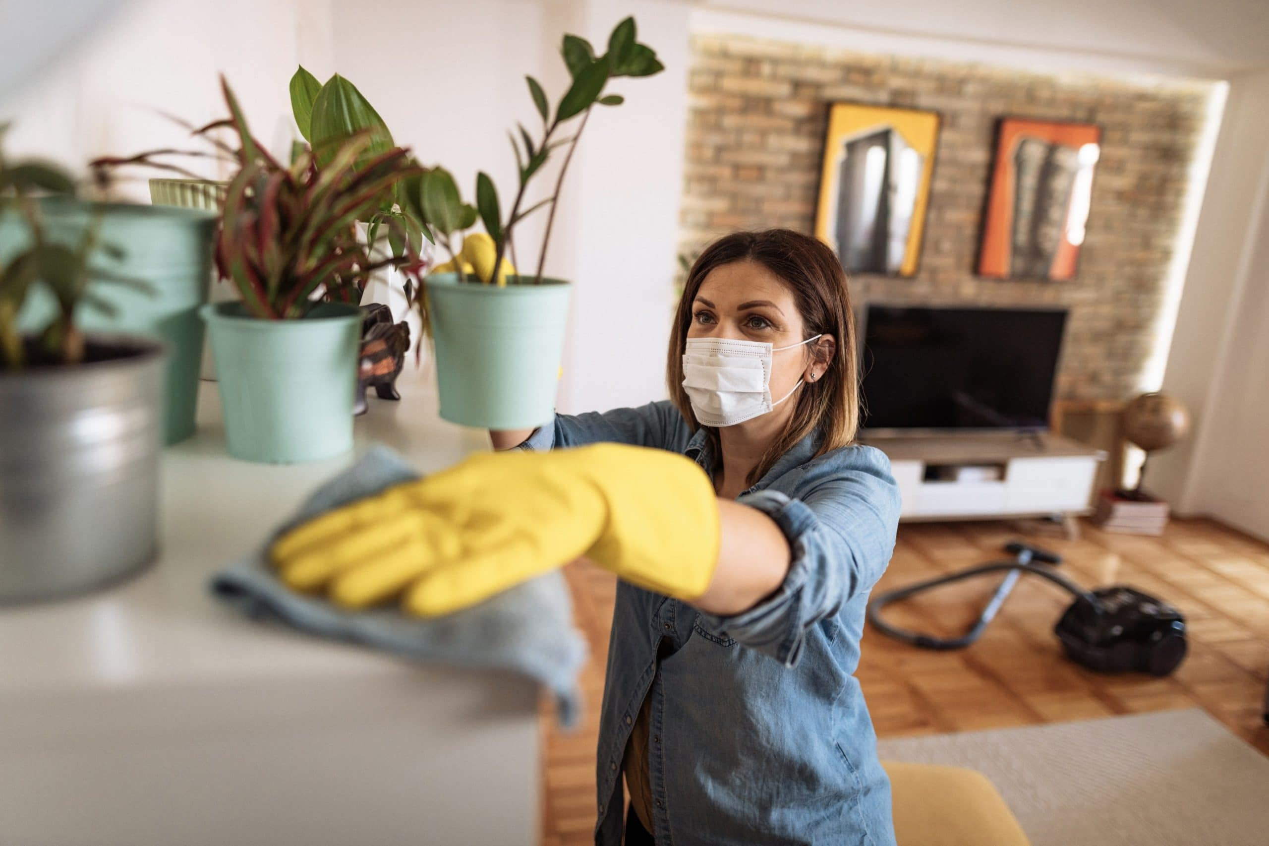 "Featured image for ""How Spring Cleaning Can Keep Bugs Away"""